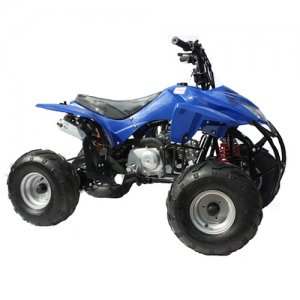 Blue Trooper 110cc 4 Stroke Petrol Quad Bike