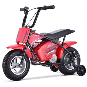 24v Retro Premium 250W Kids Ride On Monkey Bike