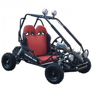 Two Seat Kids 36v Dune Buggy Off Road Racer Kart