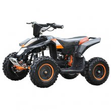Kids Sport 48v 800w Off Road Brushless Motor Quad