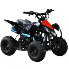Kids 50cc 4 Stroke Meerkat Quad Bike