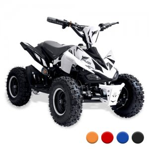 36v 800w Parental Speed Control Kids Off Road Quad Bike