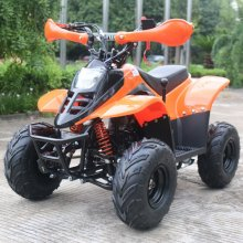 Super Speed 100cc 4 Stroke Petrol Quad