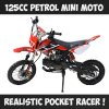125cc Ride On Mini Motocross Premium Motorbike