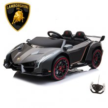 Gunmetal Grey Kids Lamborghini 24v 4WD with Remote, EVA & Tyres