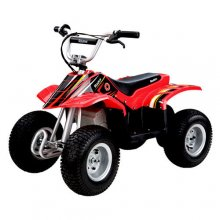 Razor 24v Kids Electric Quad Bike