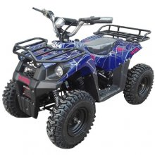 Ultimate Kids 36v 3 Speed Off Road Electric Quad Bike