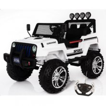 4 Wheel Drive Outback 12v Kids Jeep with Remote