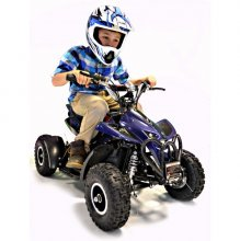 Premium Quality 36v Off-Road Electric Quad Bike [1000w]